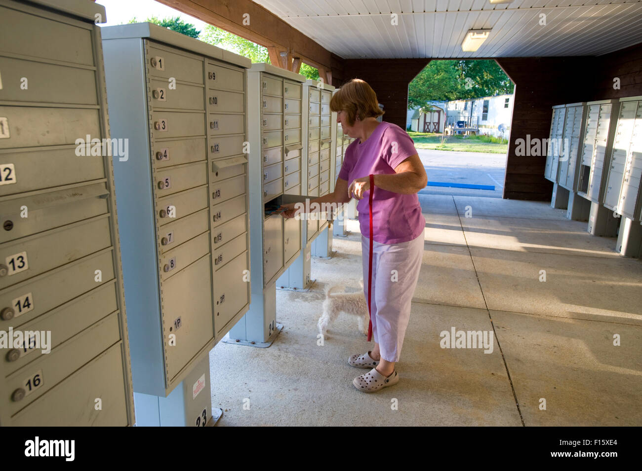 Middle aged woman getting mail from apartment mailboxes Stock Photo ...