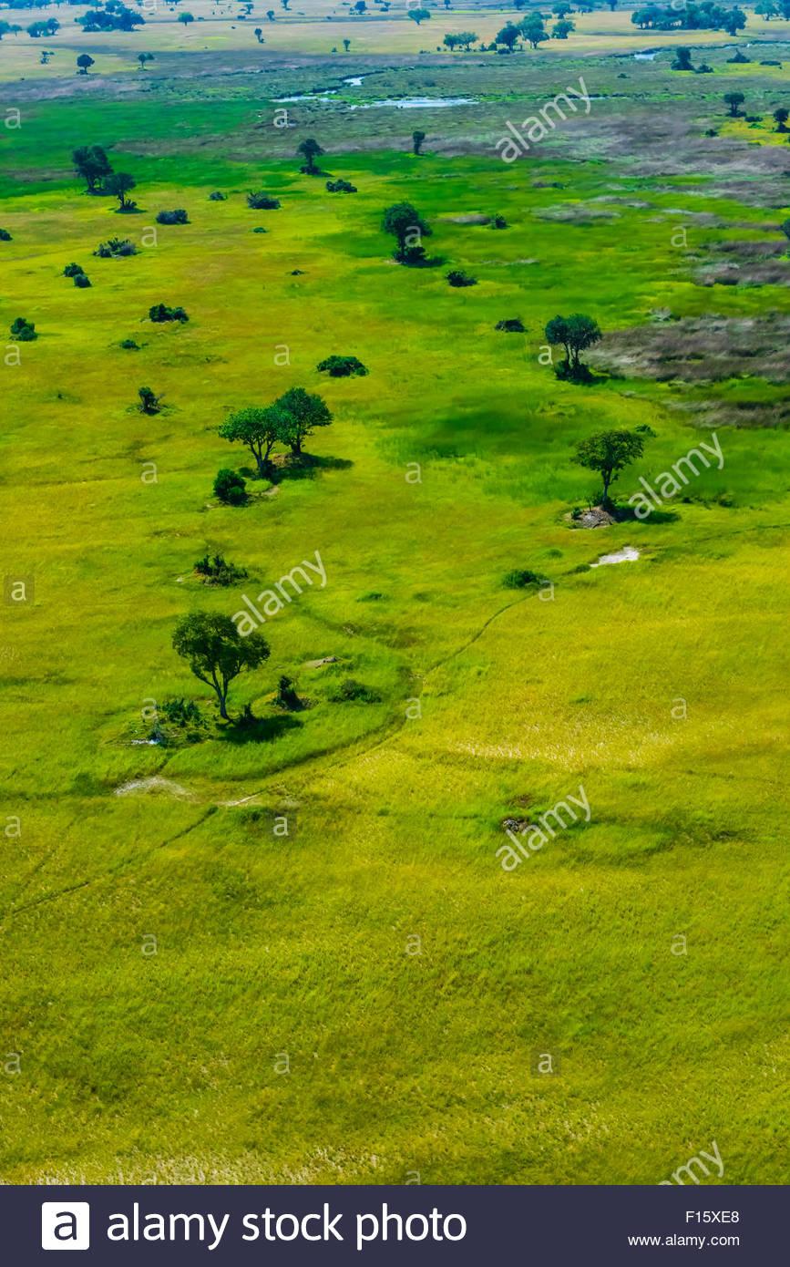 Aerial view, Okavango Delta, Botswana. Stock Photo