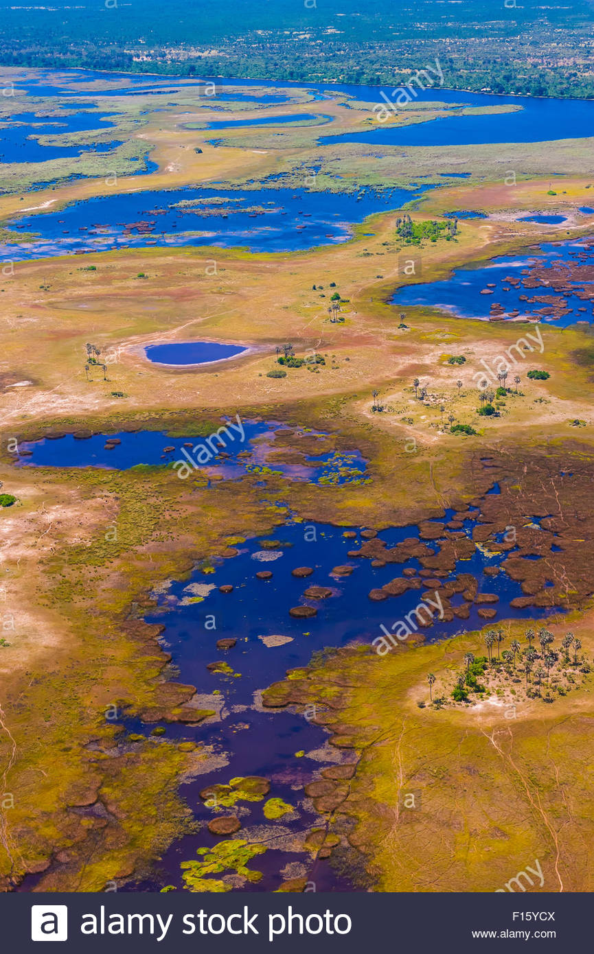 Aerial view, Okavango Delta, Botswana. - Stock Image