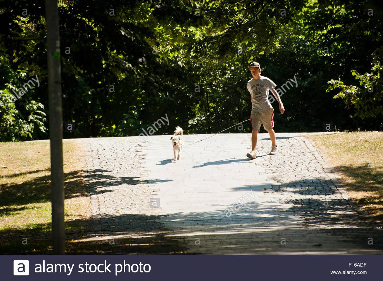 boy walking the dog - Stock Image