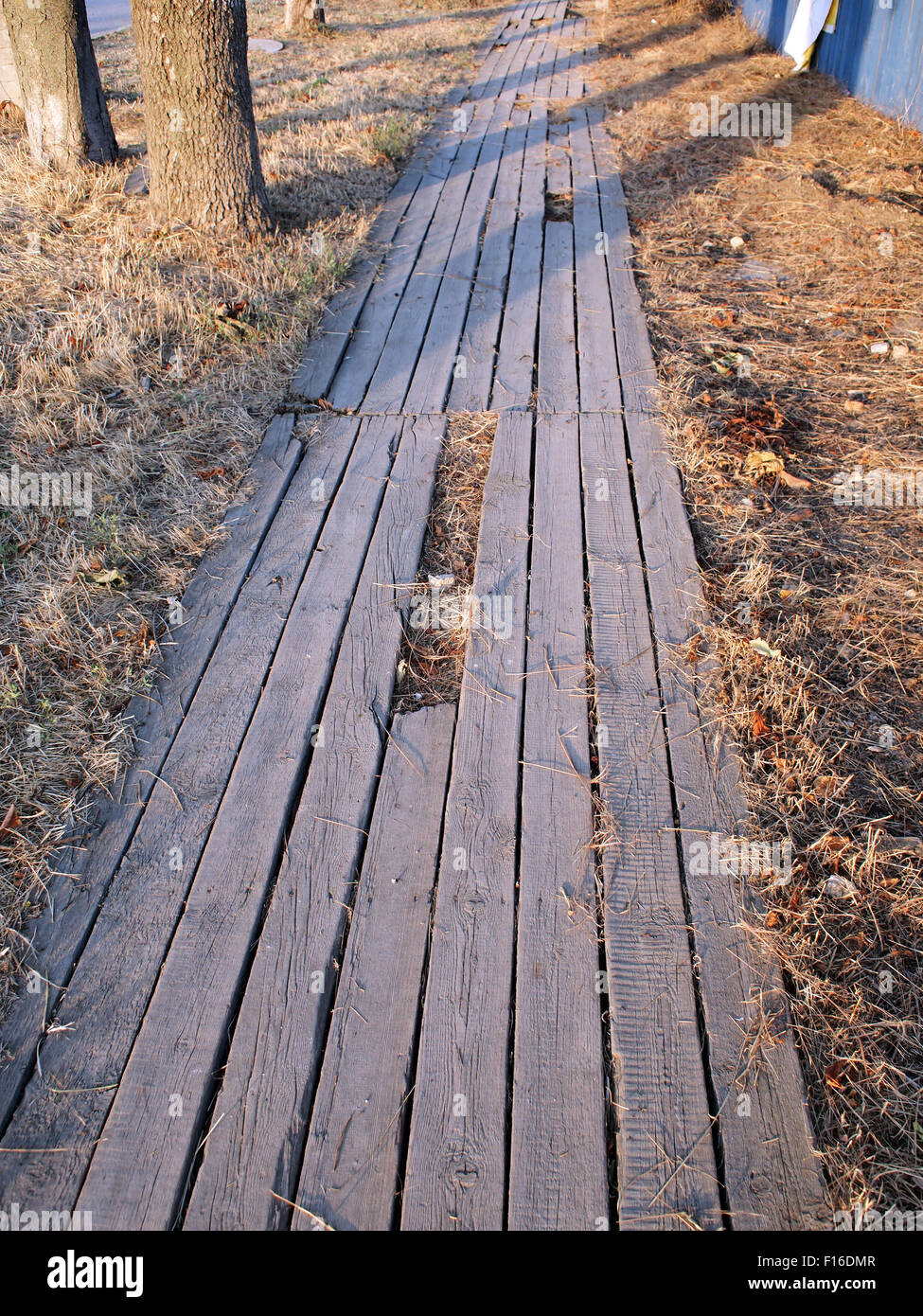 Wooden Walkway Made Of Planks Laid On The Ground Among Dry Grass