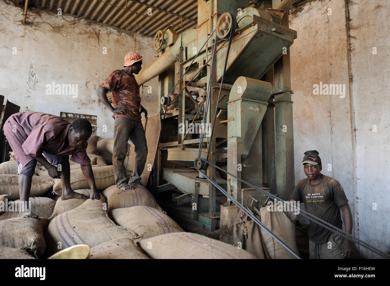ANGOLA Calulo, coffee processing unit - Stock Image