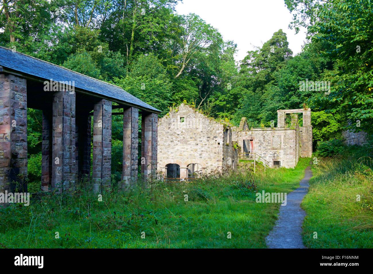 Ruins of the Howk bobbin mill, Caldbeck, Cumbria, England UK - Stock Image