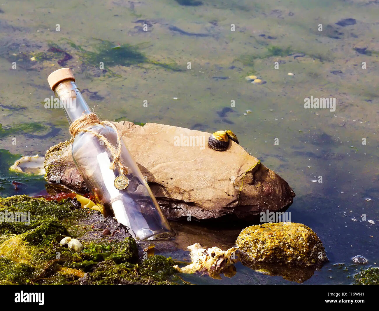 Message in a bottle washed ashore on the beach. - Stock Image