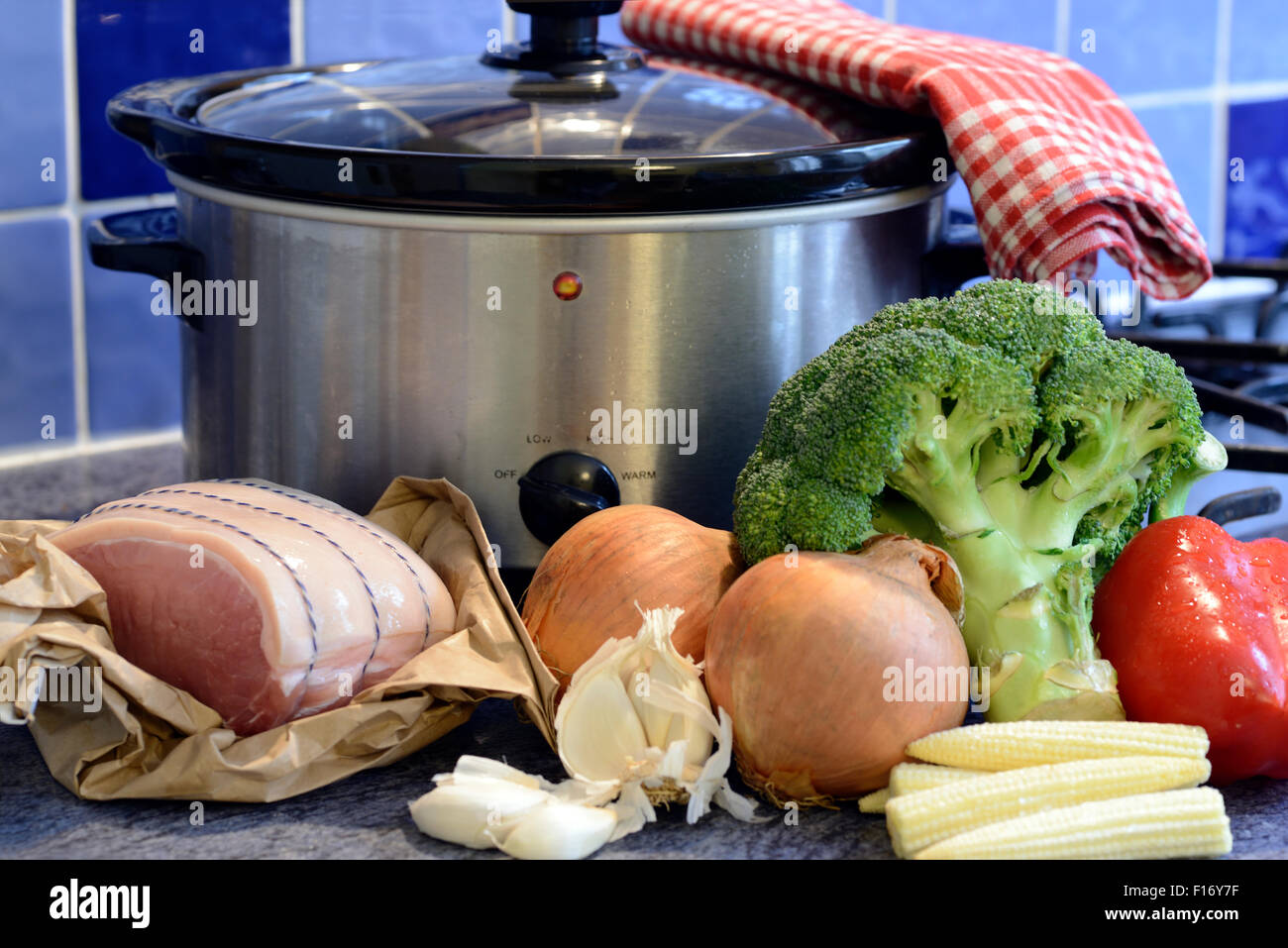 Fresh whole ingredients in front of a slow cooker pot - Stock Image