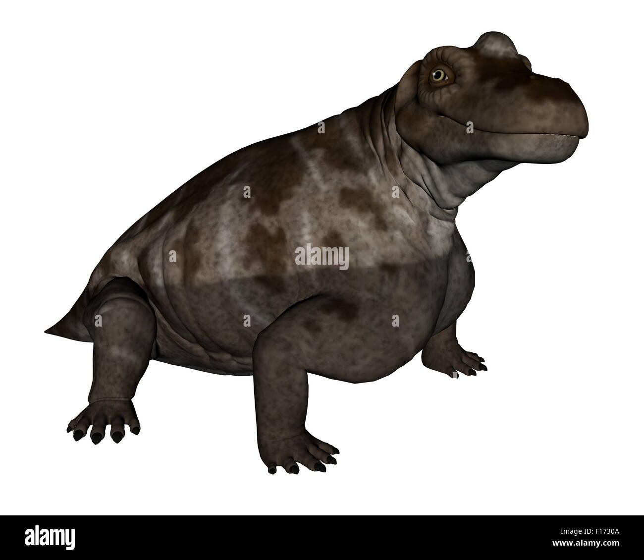 Keratocephalus dinosaur isolated in white background - 3D render - Stock Image