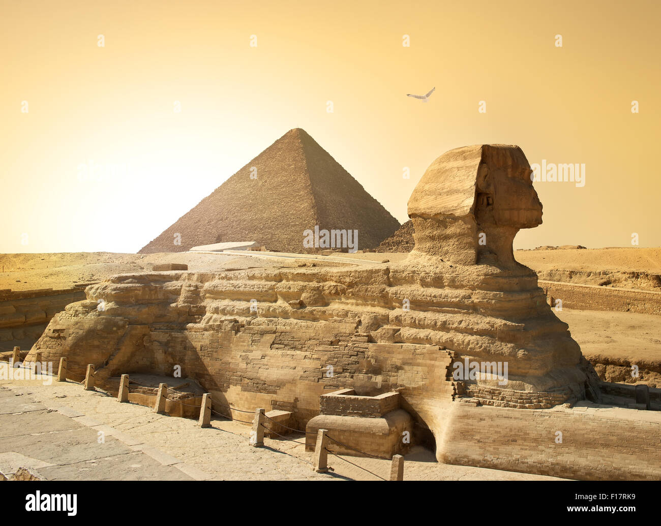 Bird over sphinx and pyramid in egyptian desert - Stock Image