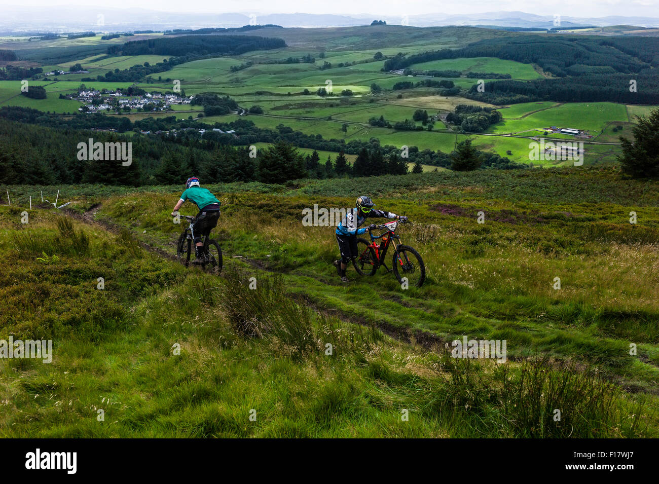 Ae Forest, Dumfries, Scotland, UK. 29th August 2015. Mountain bikers take part in the UK Gravity Enduro Series race - Stock Image