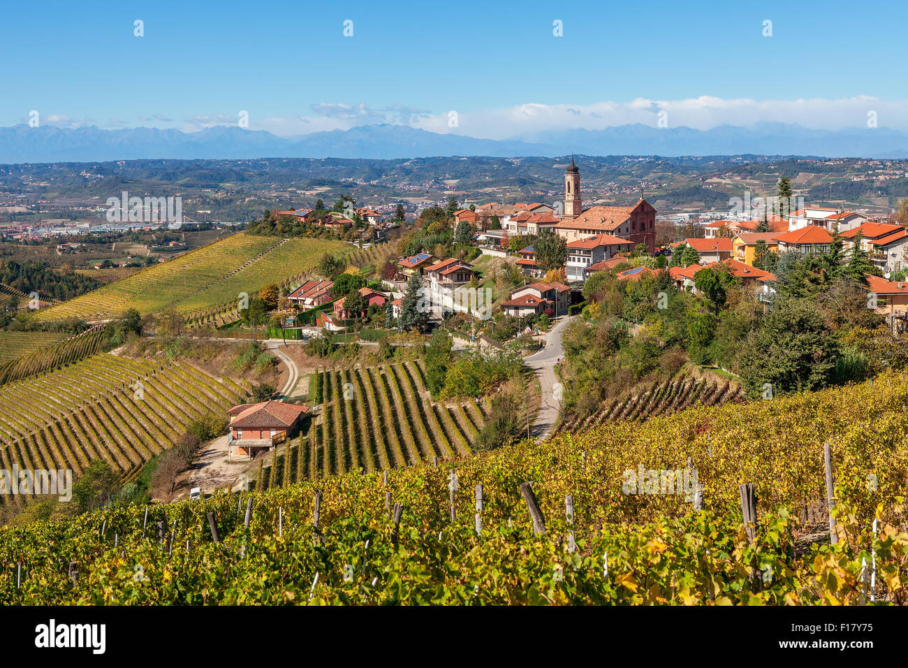 Autumnal vineyards and small town of Treiso in Piedmont, Northern Italy. - Stock Image
