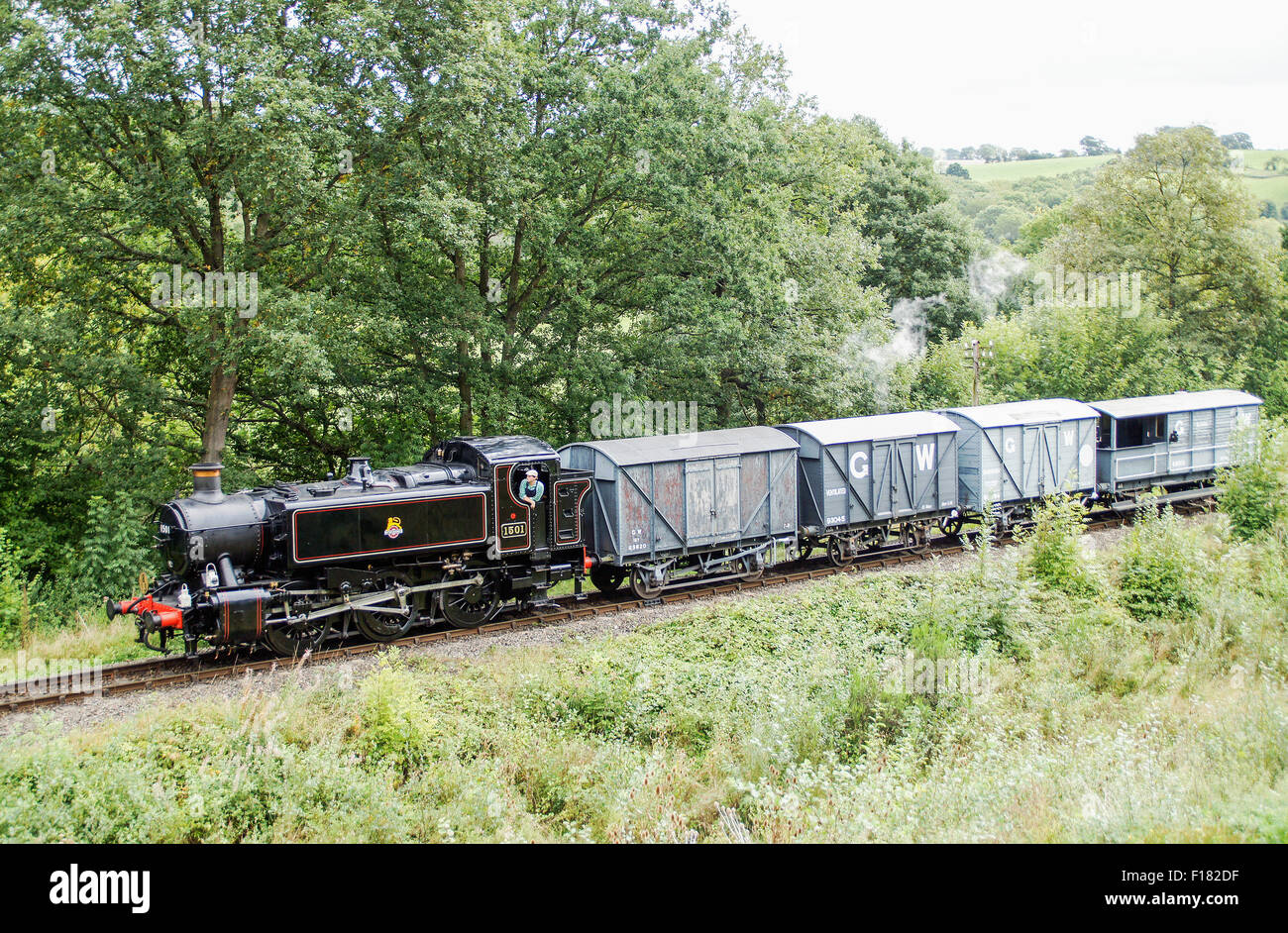 1501 GWR 0-6-0PT pulling a freight train on the SVR approaching Highley - Stock Image