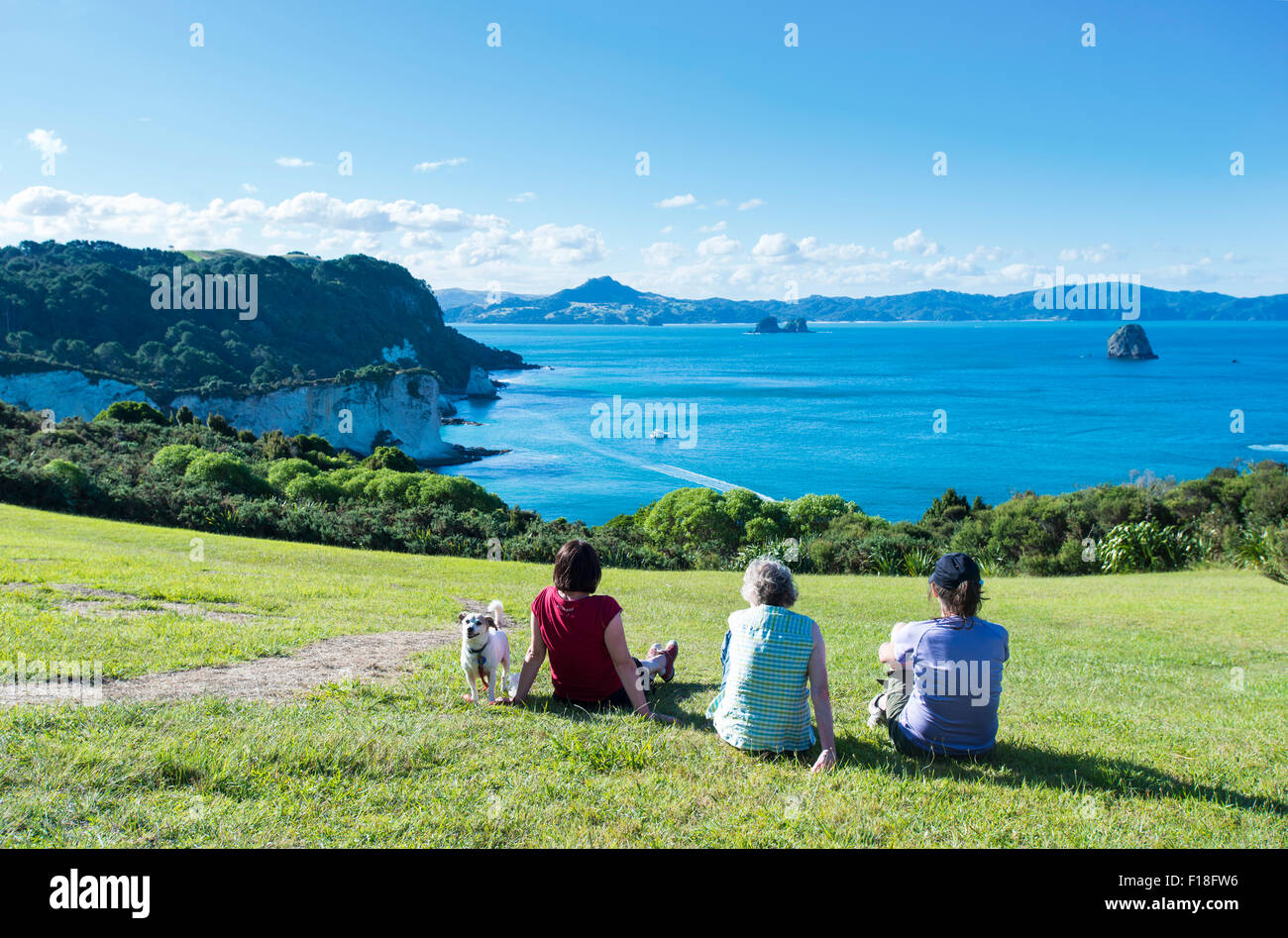 3 people and their dog relaxing on the grass and looking out over Gemstone Bay and Coromandel Peninsula - Stock Image