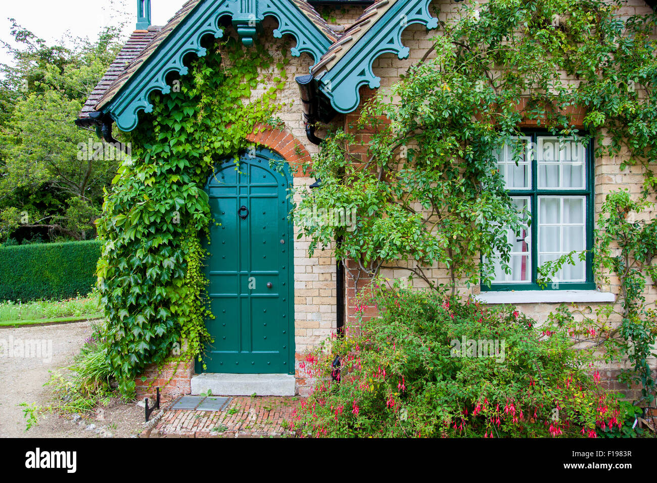 An Old English Cottage With Ivy And Creepers On The