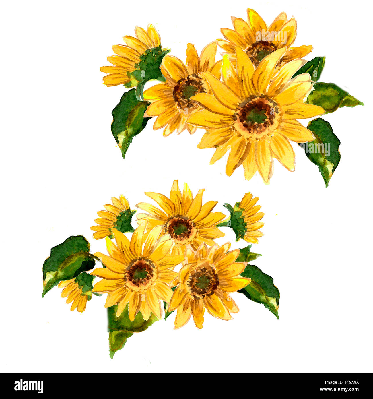 The Pattern Of Blooming Yellow Flowers Sunflower Painted In Stock
