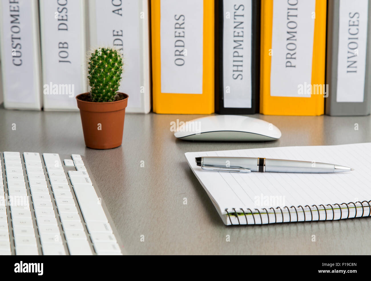 Office Work Space On Grey Desk With Cactus And Folders