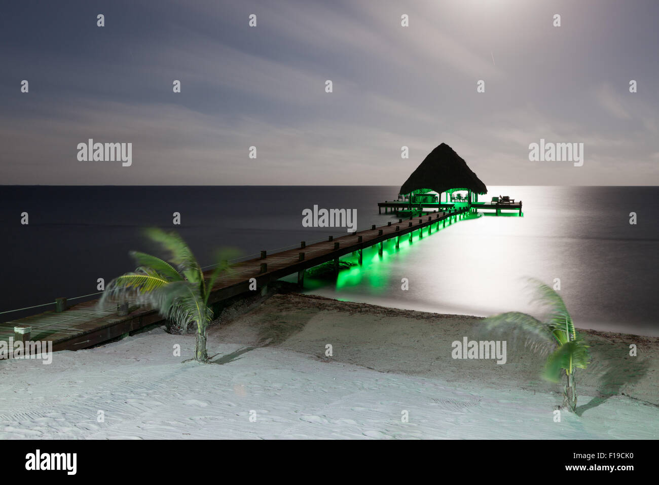 A long exposure of a beach with a dock and small palm trees lit by the moonlight and green lights under the dock. & A long exposure of a beach with a dock and small palm trees lit by ...