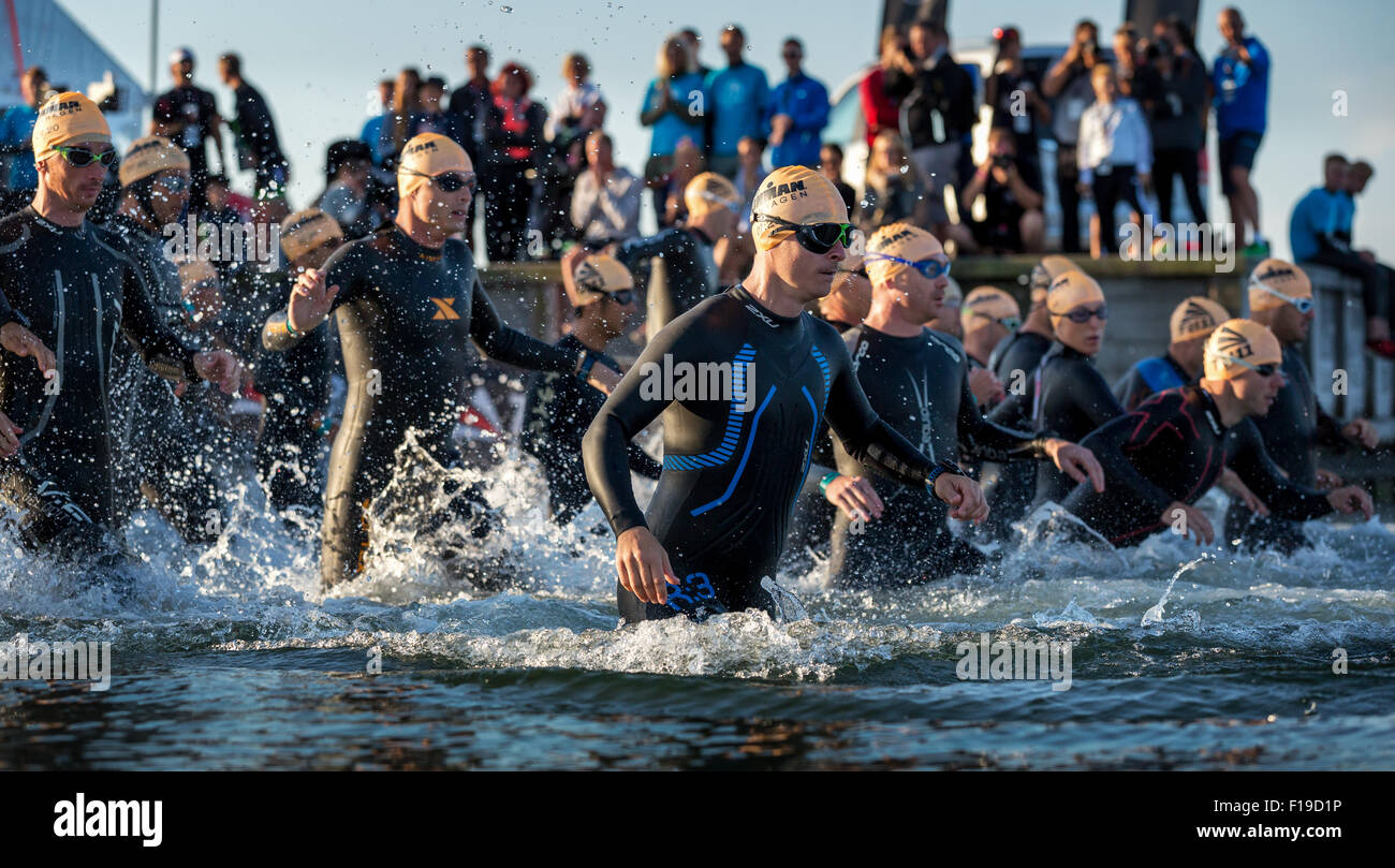Participants of the Ironman Triathlon starting the race in the surf, Amager Strandpark, Copenhagen, Denmark - Stock Image