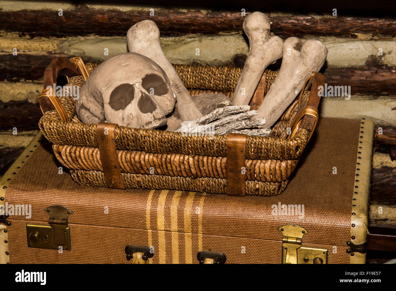 Creepy Halloween Skeleton - Stock Image