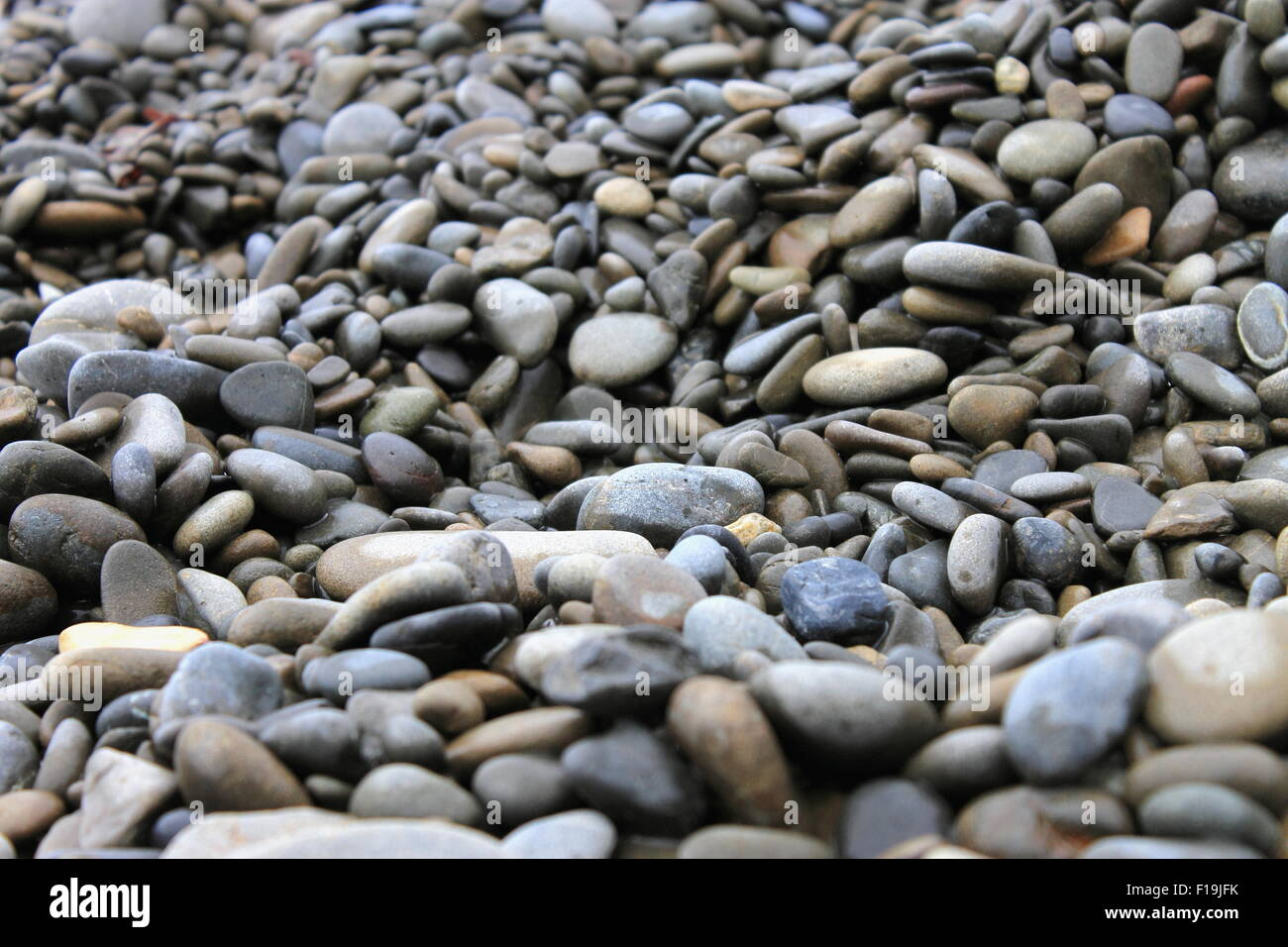 Stony Beach - Stock Image