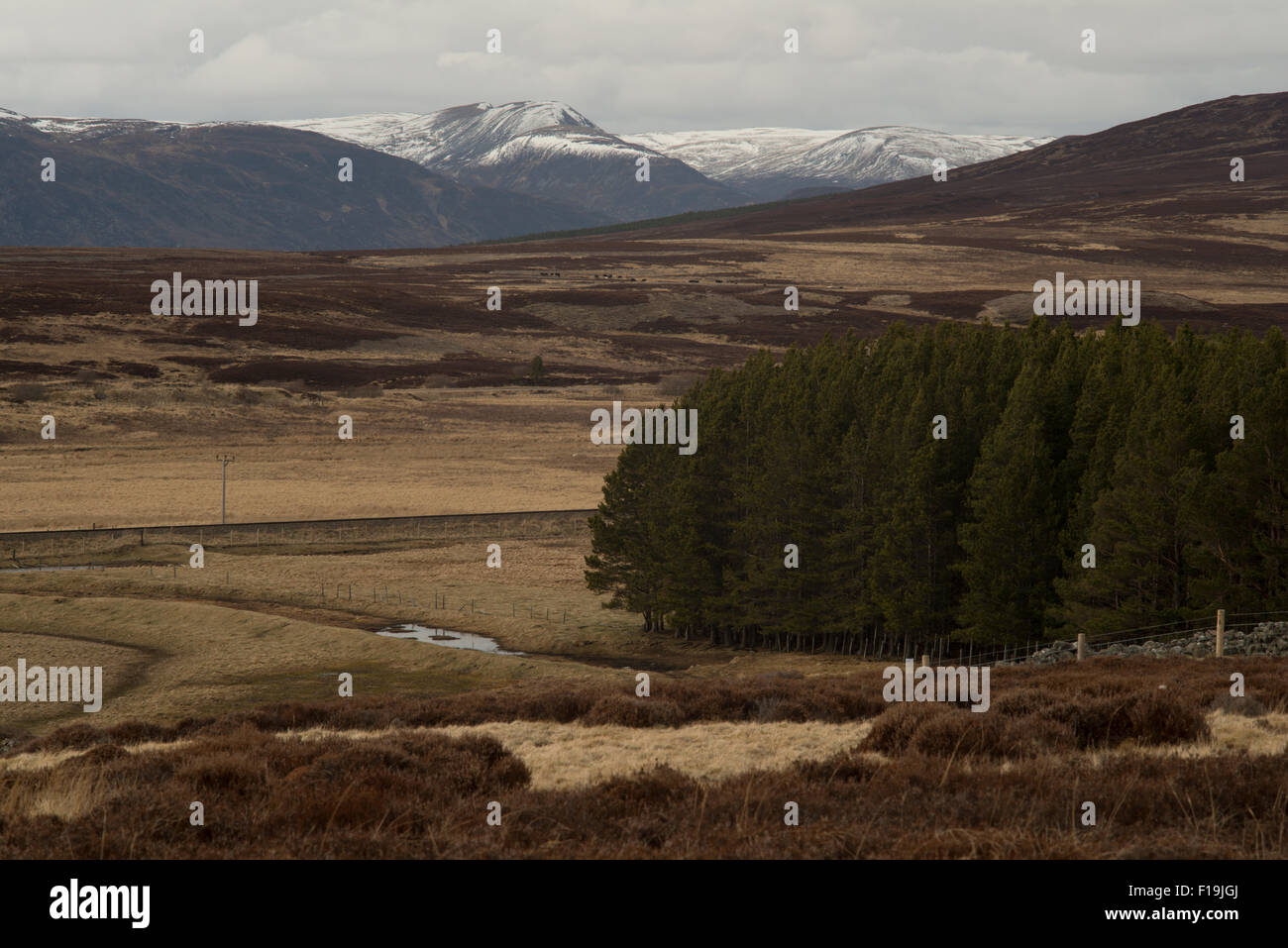 Across Cathar Mor to Creag na Doire Duibhe,Highland,Scotland,UK, - Stock Image