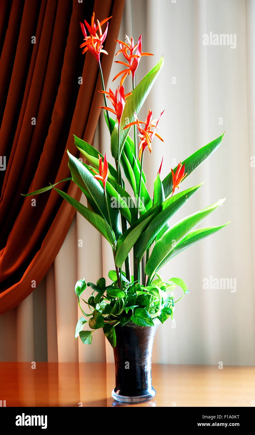 Hotel Foyer Flower Arrangements : Hotel lobby flowers stock photos