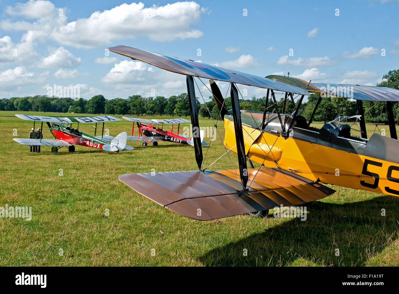 4a9e6ad3d Two DH.60 de Havilland Gypsy Moths framed by the wings of a DH.82 Tiger Moth  at the International DH Moth Rally at Woburn Abbey