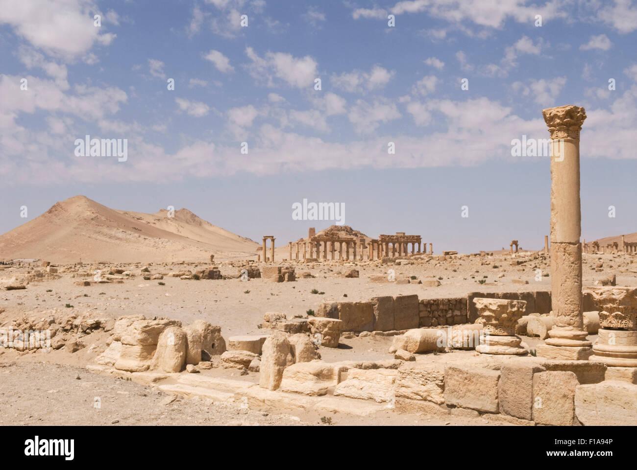 Palmyra, Syria - 2nd Century Roman ruins. UNESCO World Heritage Site. Mandatory credit Jo Whitworth - Stock Image