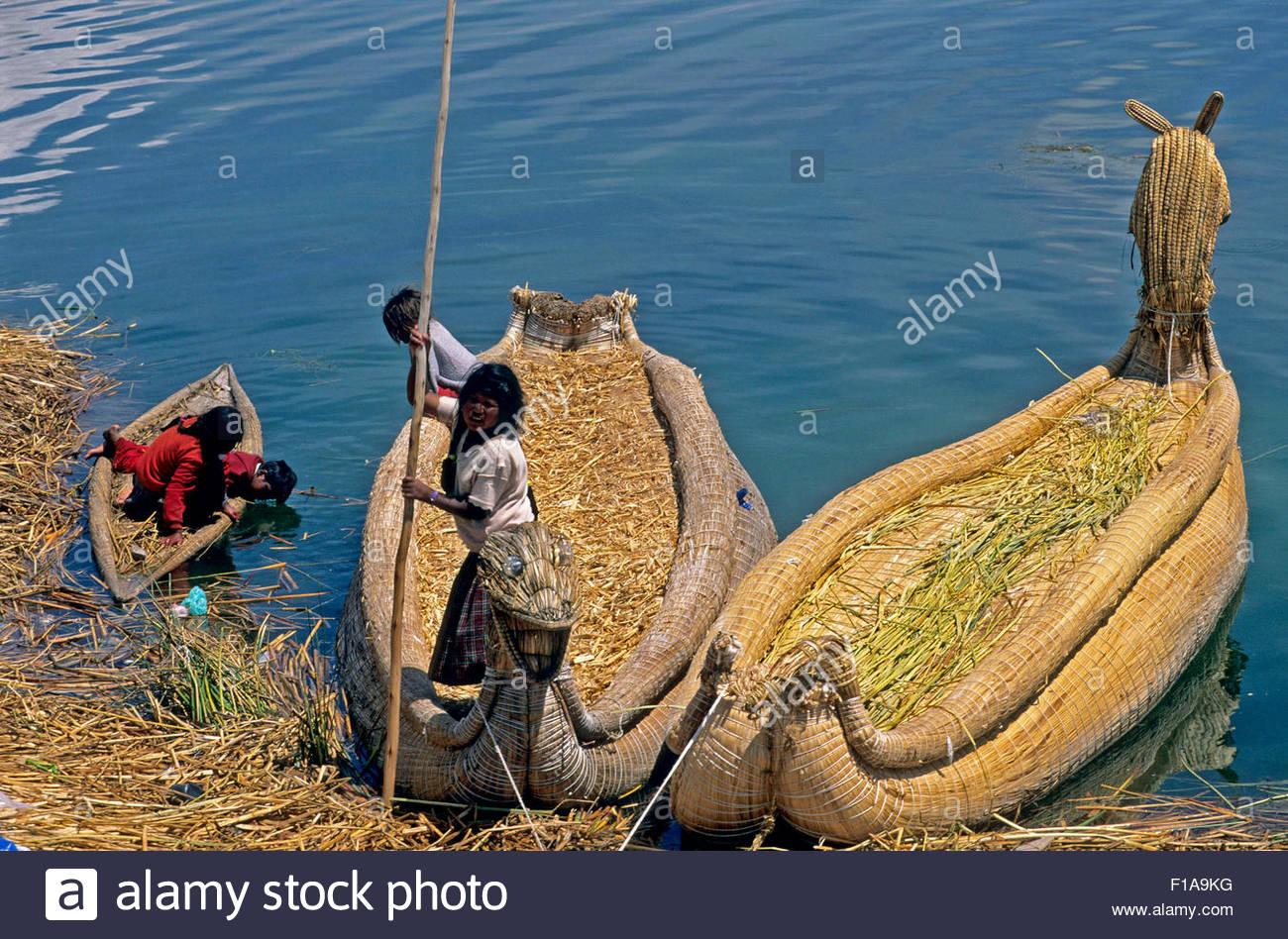 PERU / Puno / Lake Titicaca / Floating islands of the Uros / Uro woman harvesting reed - Stock Image