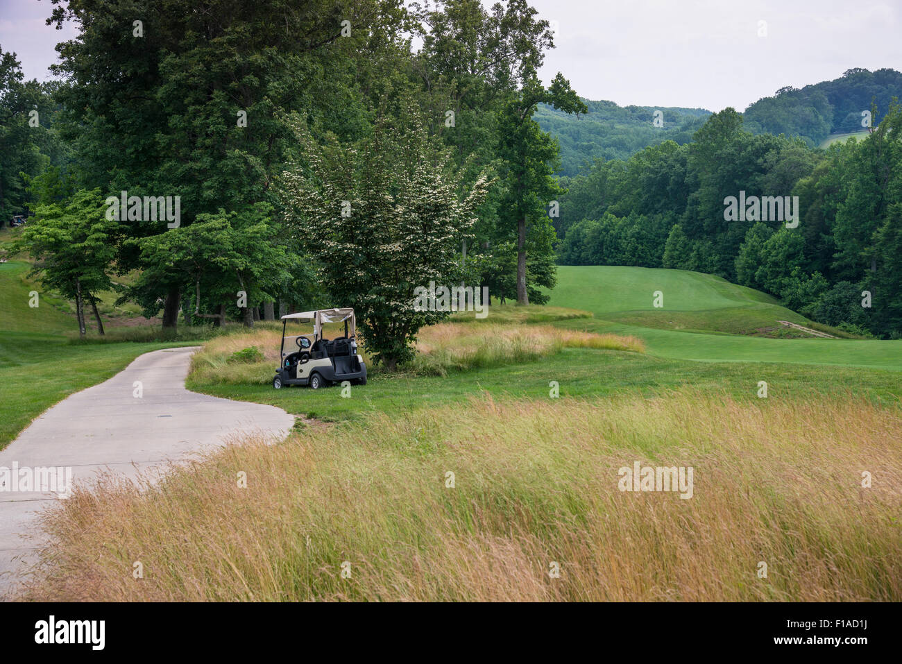 Golf Cart On Side Of Golf Course Fairway - Stock Image