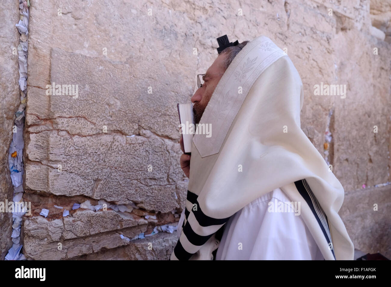 Ultra Orthodox Jew wrapped with traditional religious Talit shawl and Tefillin phylacteries at prayer in the Western - Stock Image