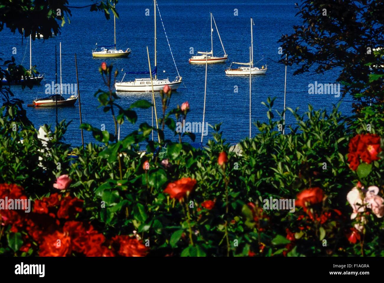 Southend-on-Sea gardens and seafront. Essex. England. UK - Stock Image