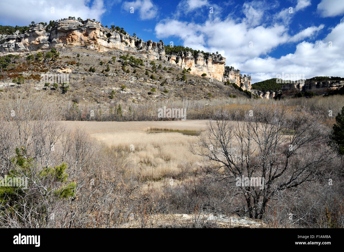 Panoramic view of Uña lagoon with reeds and surrounding cliffs in Serrania de Cuenca Natural Park (Cuenca, - Stock Image