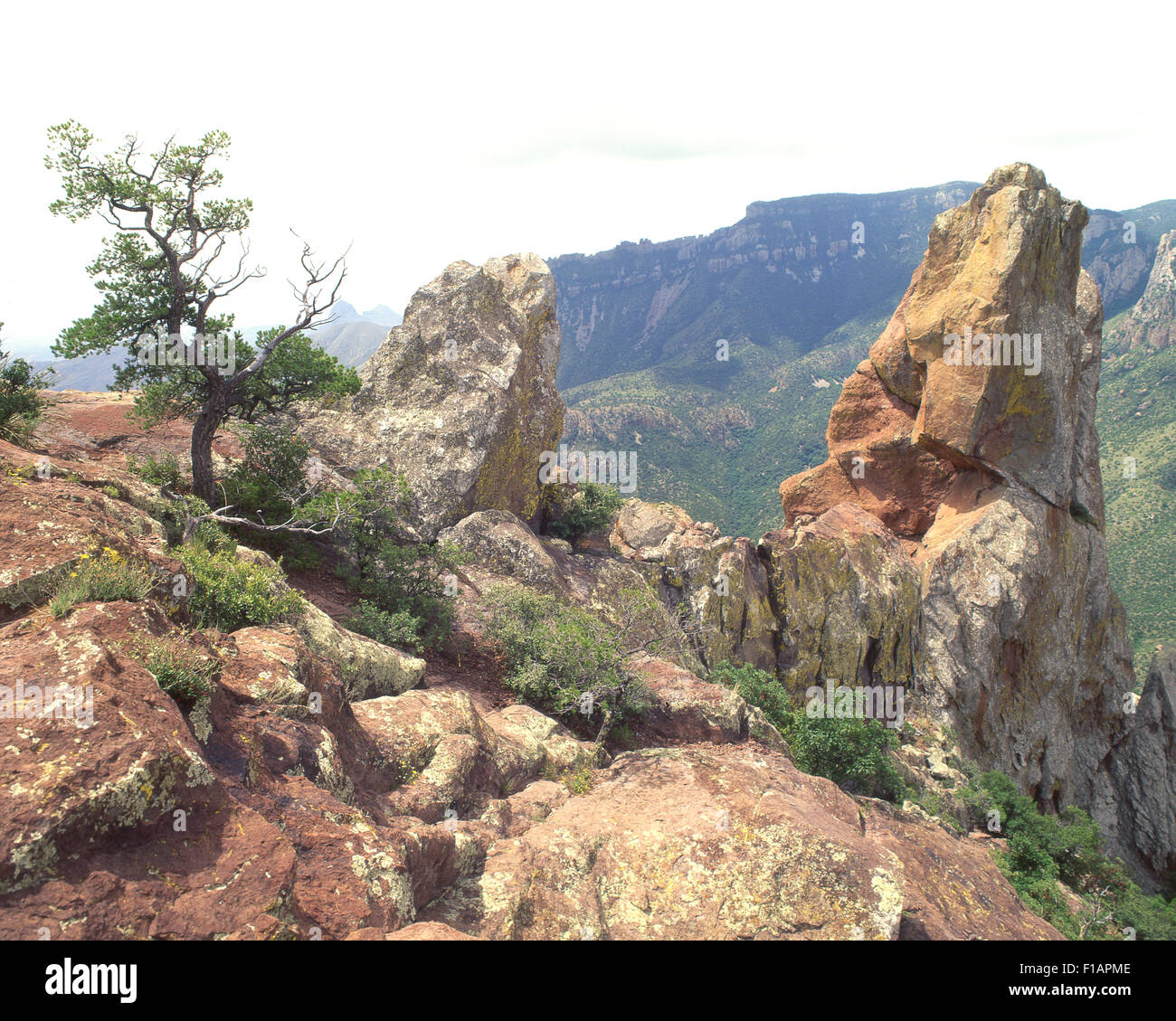 Big Bend Stock Photo