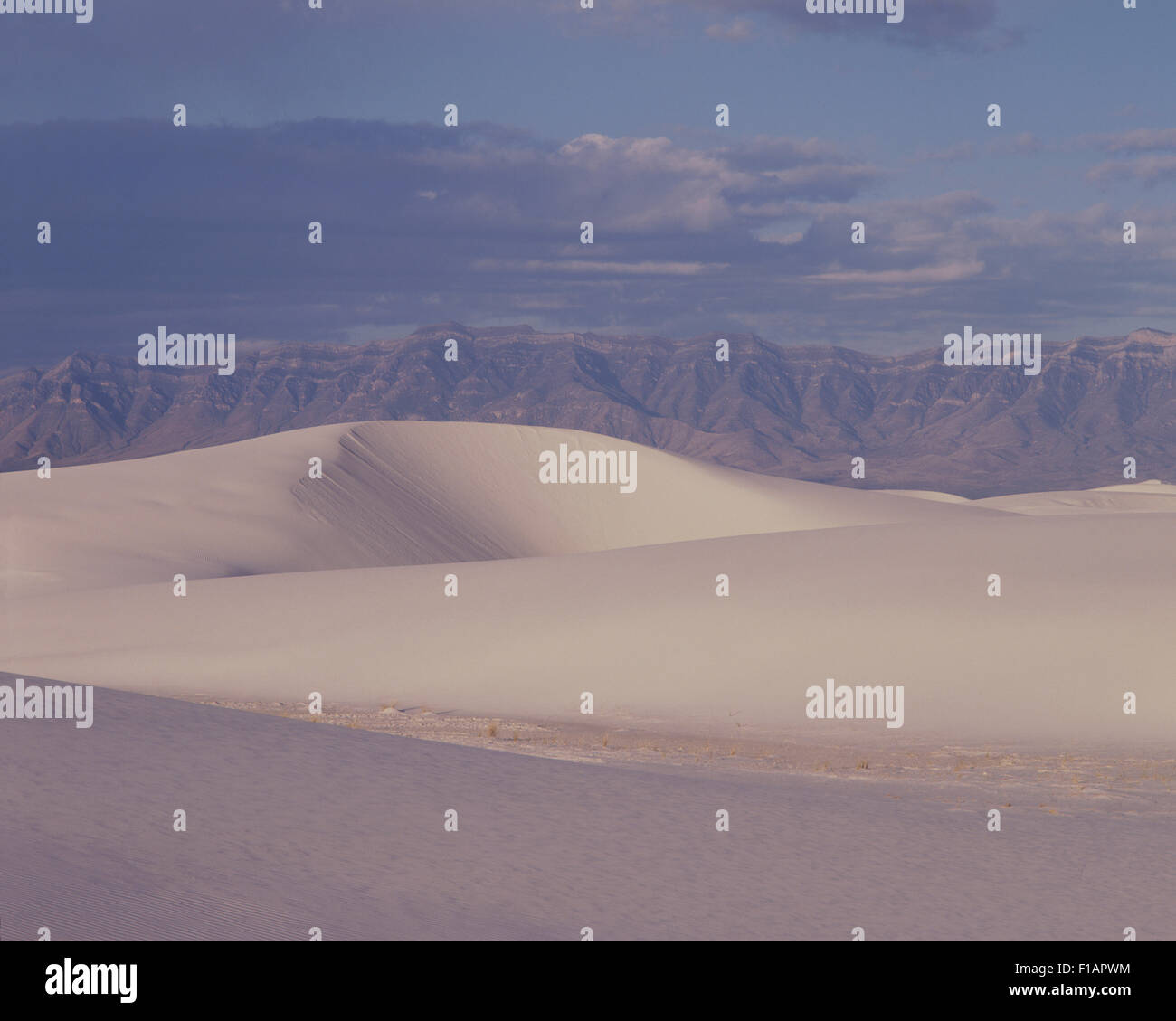 Big Bend - Stock Image