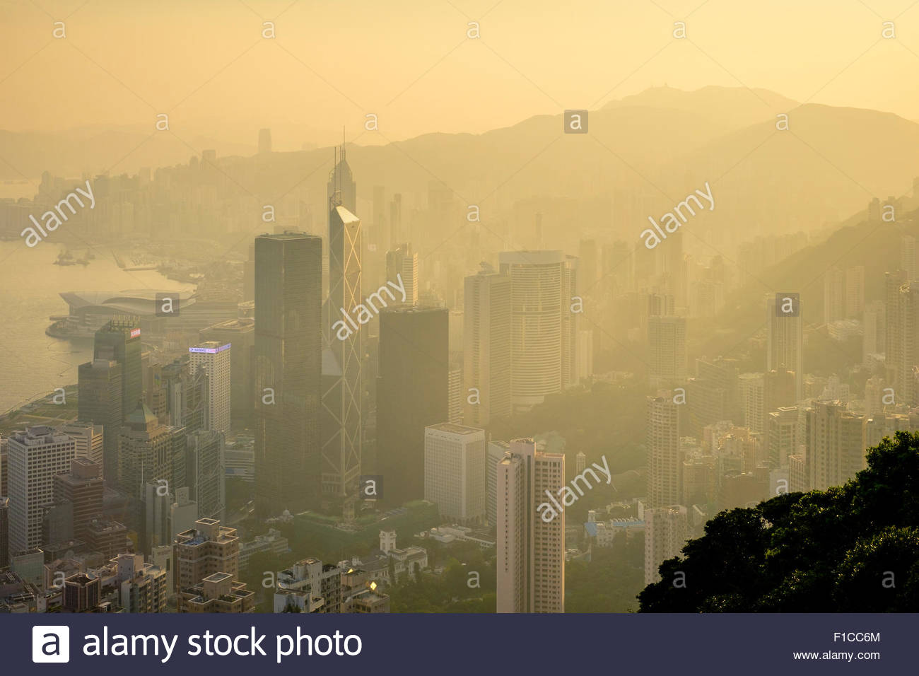 Skyscrapers in central Hong Kong, Admiralty and Mong Kok seen from The Peak at sunrise, Hong Kong Island, Hong Kong, - Stock Image