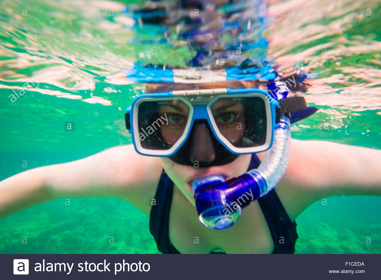 Woman snorkeling off the coast of Coron Island at Coral Eden, Palawan, Philippines - Stock Image