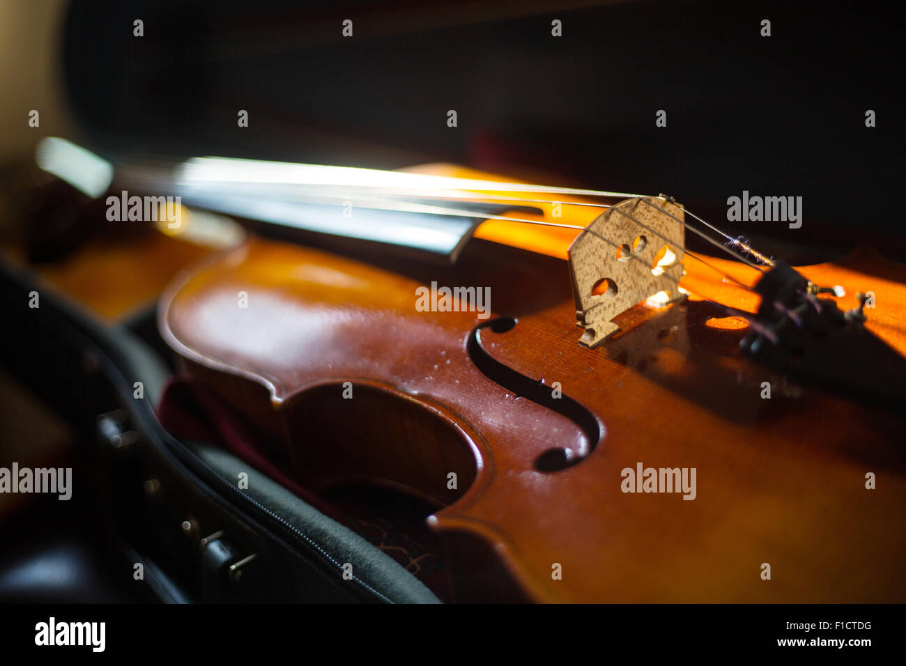 Detail of a viola in case - Stock Image