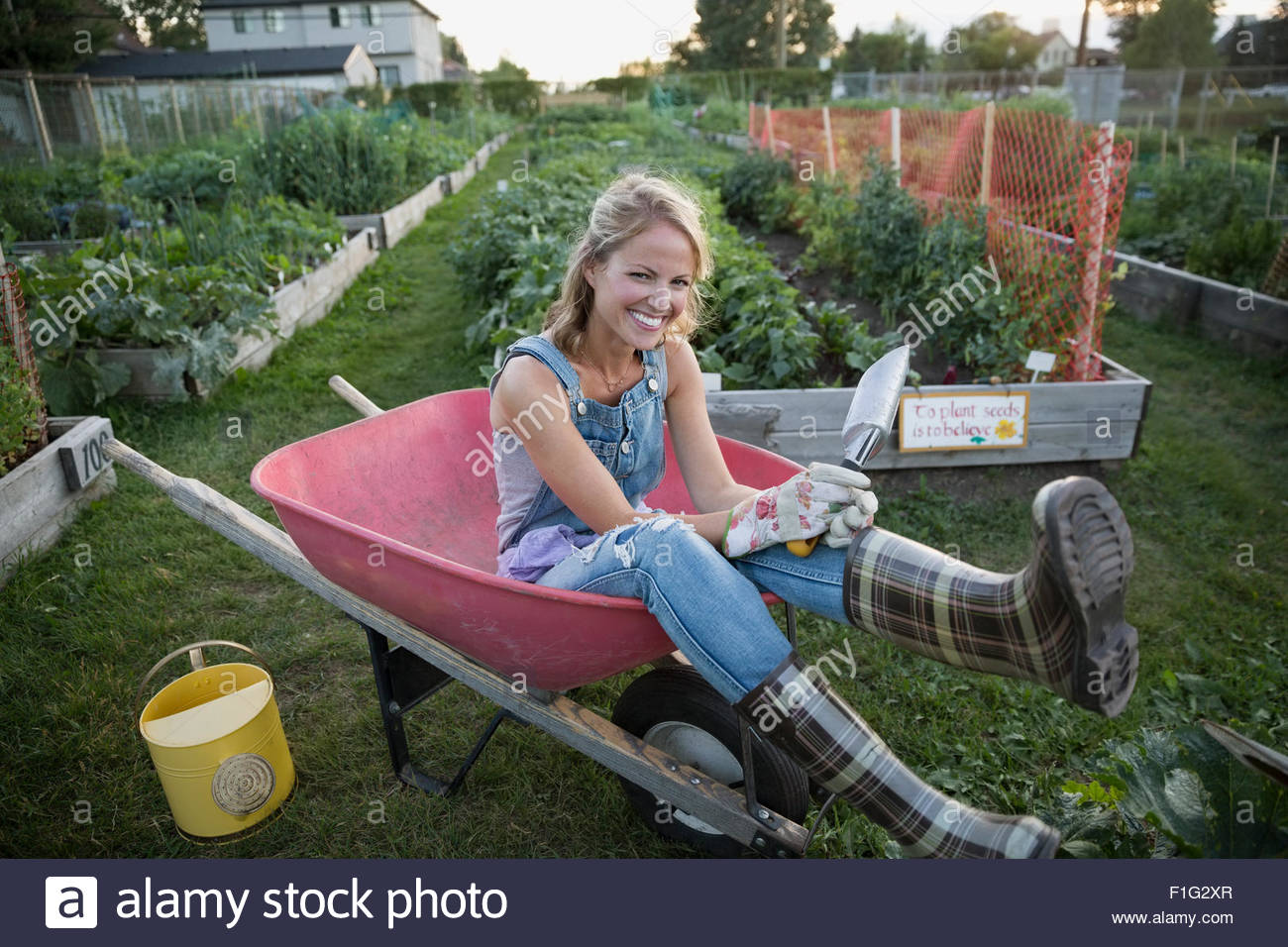 Playful woman plaid wellingtons sitting wheelbarrow garden - Stock Image