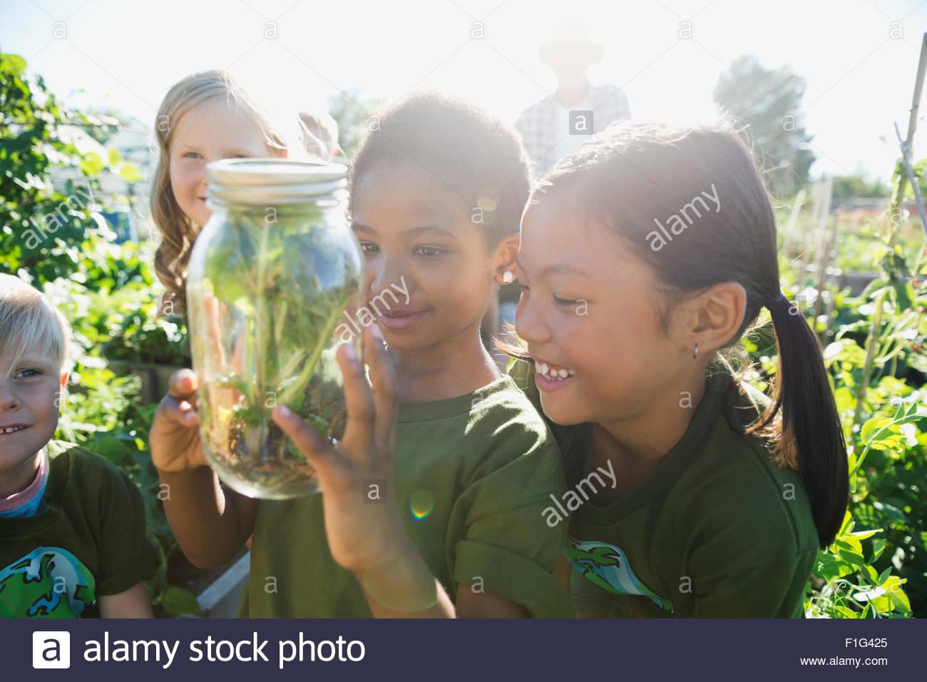 Curious girls examining plant jar sunny garden - Stock Image