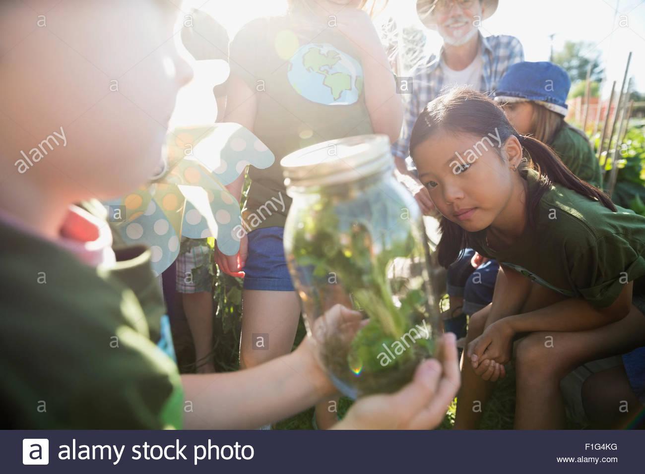 Kids examining plant in jar in sunny garden - Stock Image