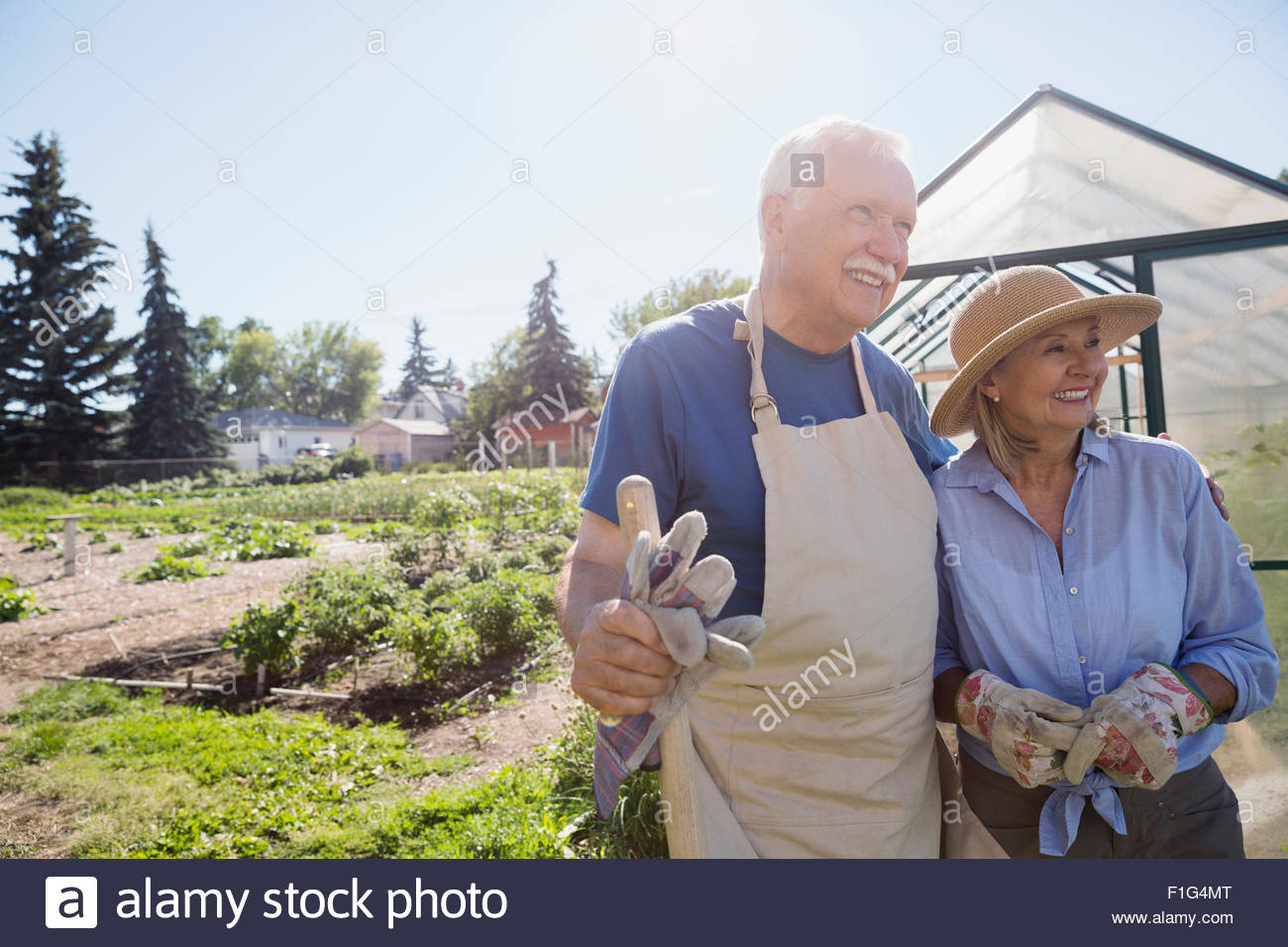 Smiling senior couple with gardening gloves sunny garden - Stock Image