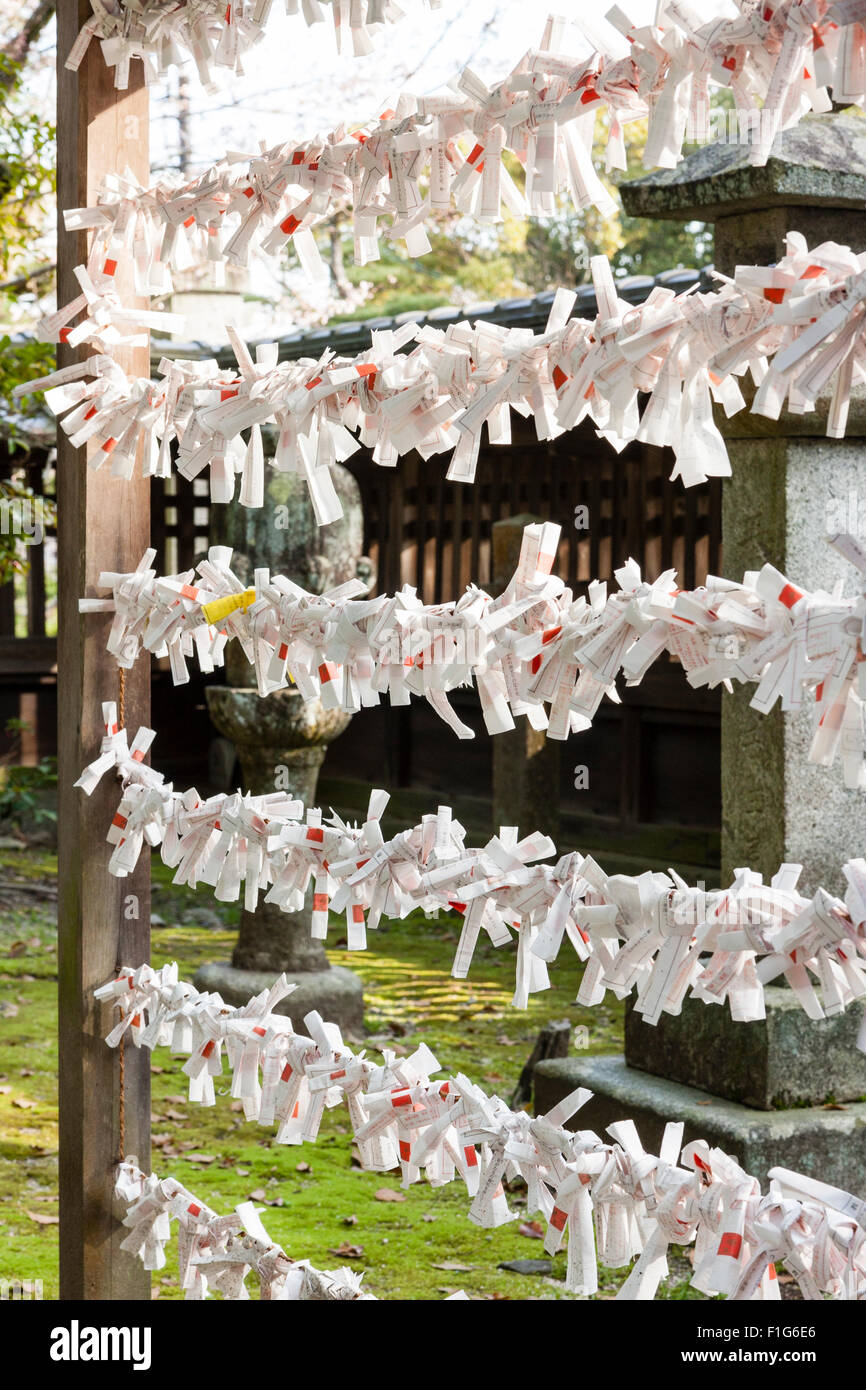 Iwakuni, Japan. Kikko Park, Kikki Shrine, frame with many o-mikuji, fortune papers tied - Stock Image