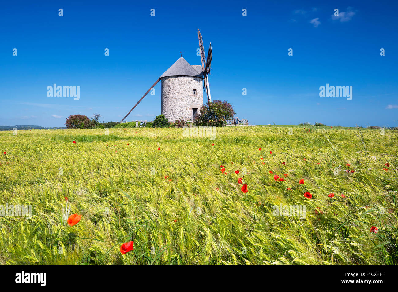 View of Windmill and wheat field, France, Europe. - Stock Image