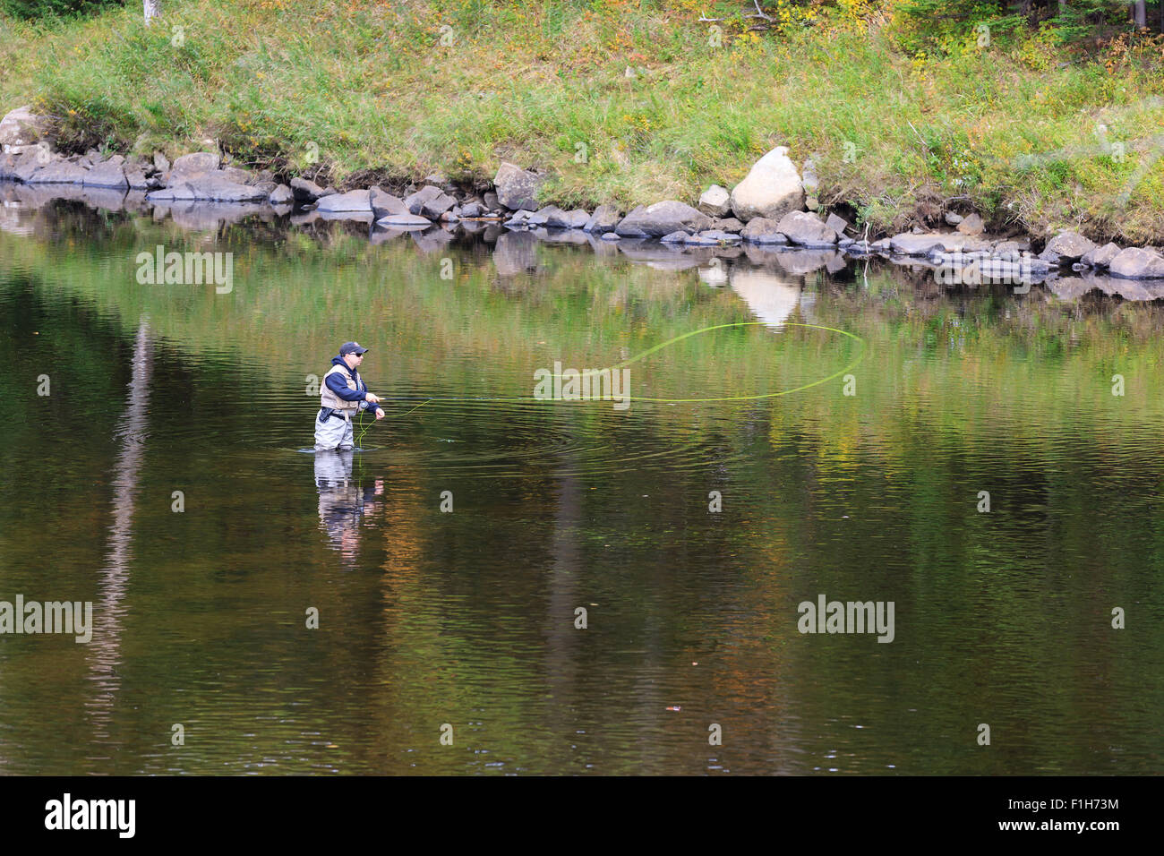Man fly fishing in a river in upstate New York in Adirondacks State Park - Stock Image