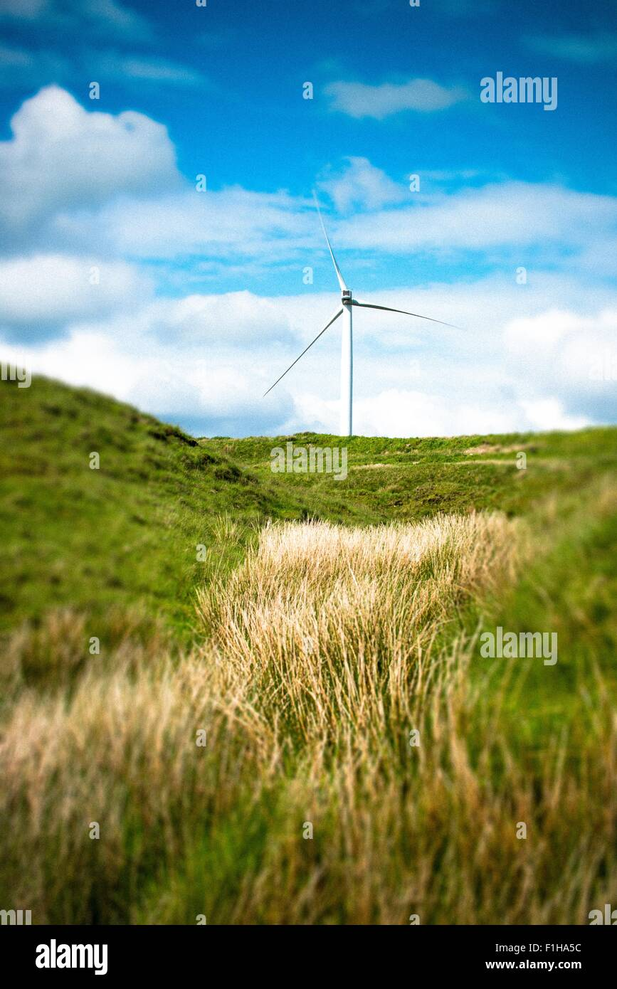 View of wind turbine in moorland field, UK - Stock Image