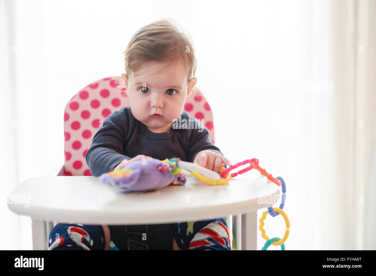 Six (6) month old baby girl in high chair with toy - Stock Image