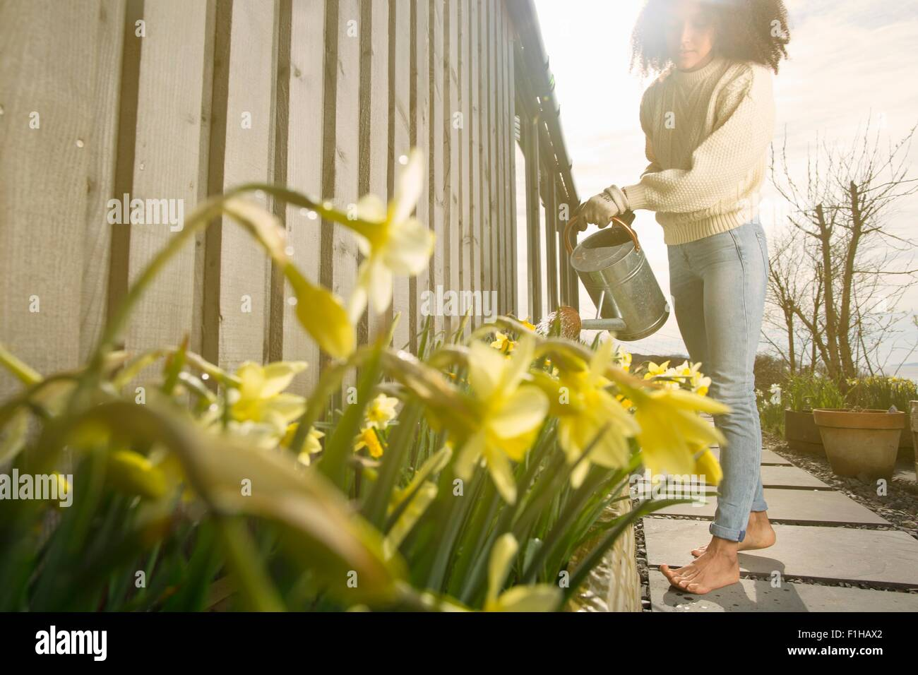 Mid adult woman watering flowers - Stock Image