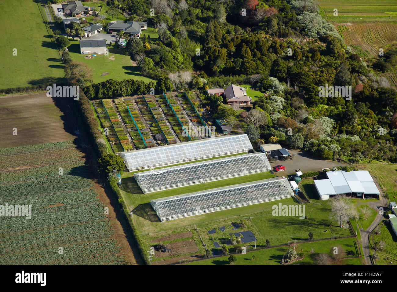 Glasshouses and nursery near Pukekohe, South Auckland, North Island, New Zealand - aerial - Stock Image