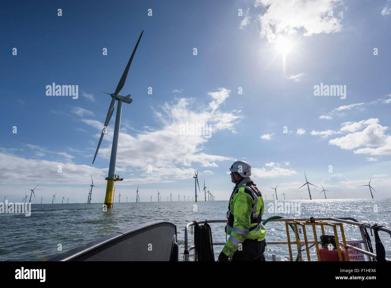 Worker looking out from ship to offshore wind farm - Stock Image