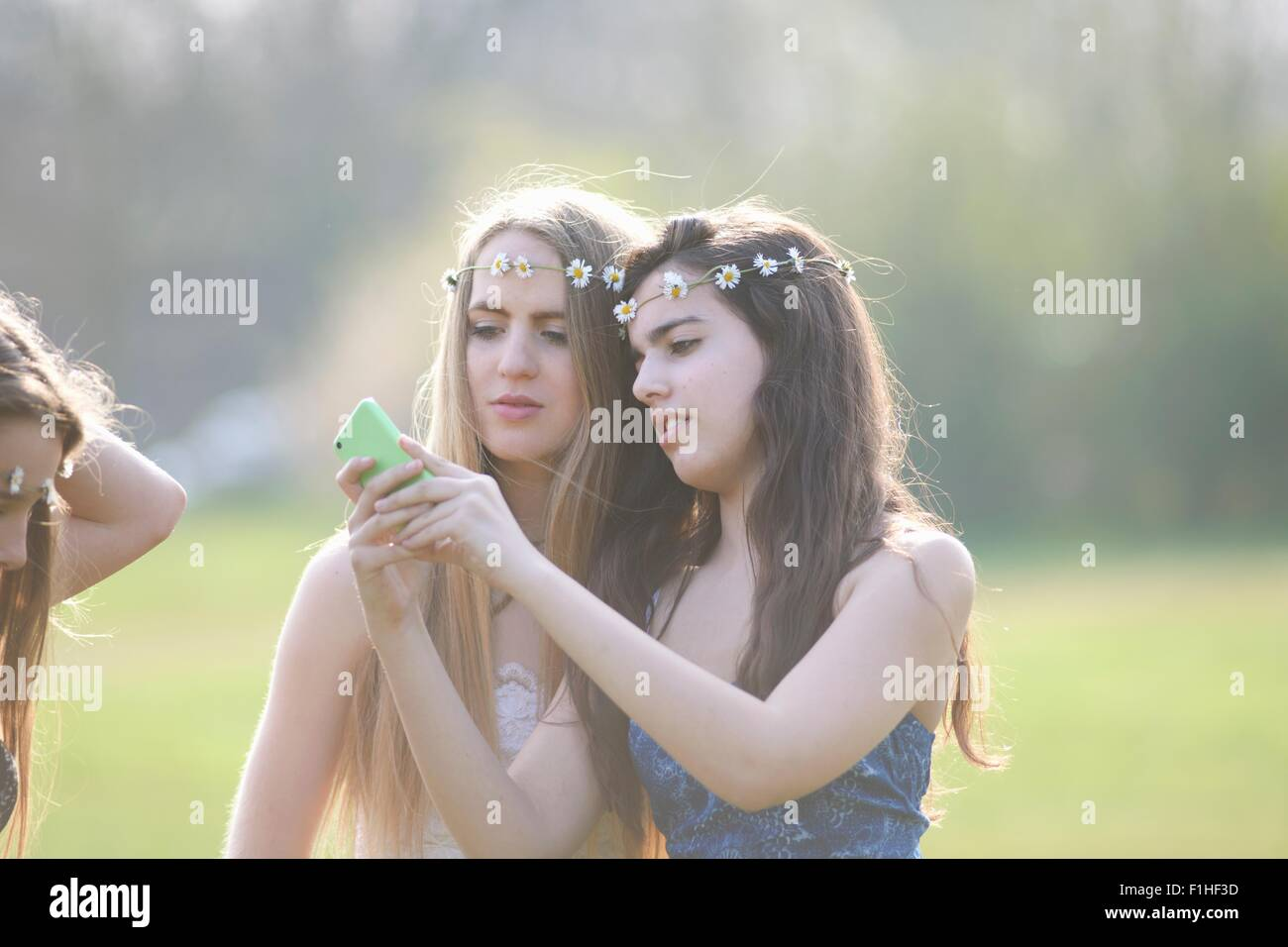 Two teenage girls wearing daisy chain headdresses reading smartphone texts in park - Stock Image