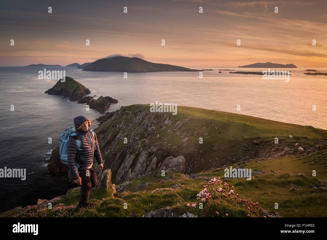 Mid adult man, hiking, Slea head, County Kerry, Ireland - Stock Image
